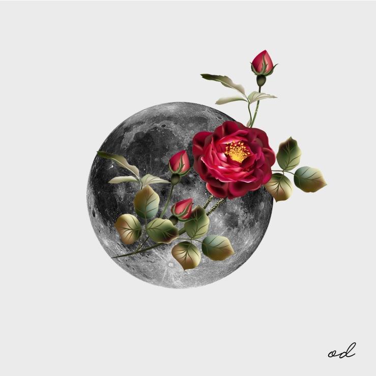 MoonFlow
